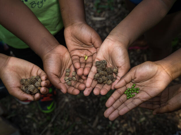 Planting the Seeds of Stewardship
