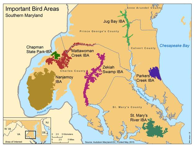 Southern Maryland Important Bird Areas Inform Land Use Planning